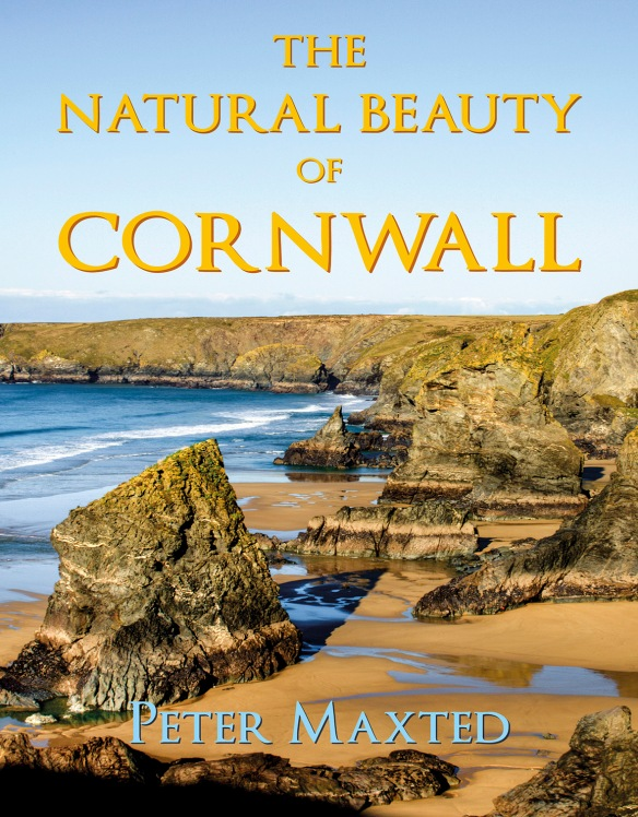 The Natural Beauty of Cornwall by Peter Maxted